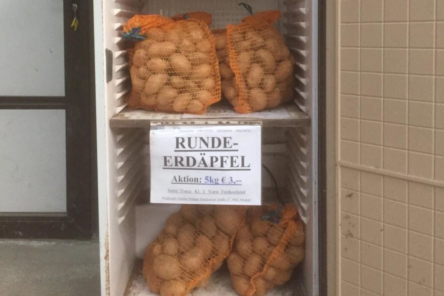 Kühlschrank mit Erdäpfel, Foto von Fischer