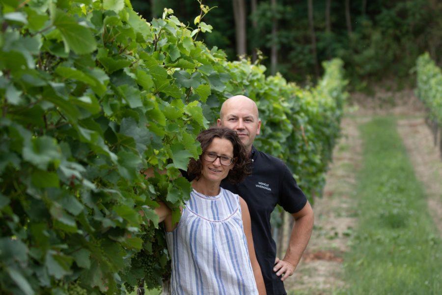 Fam Weinlinger im Weingarten, Foto von Weinlinger